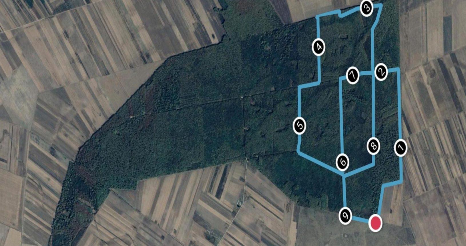 Traseul cros 10 km Alerg în Dumbrava
