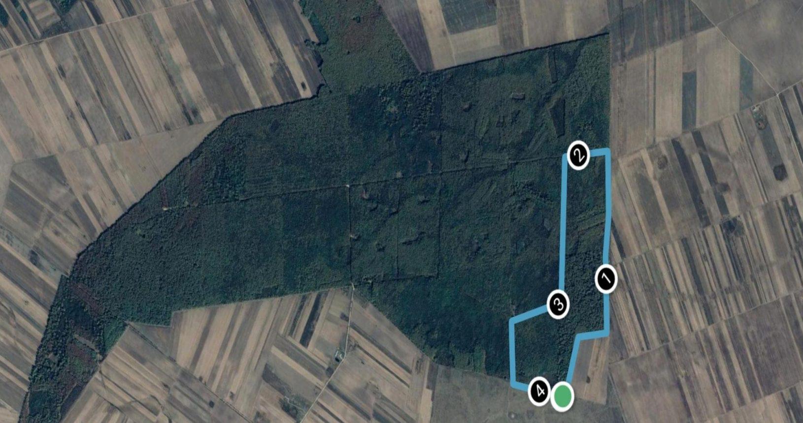 Traseul cros 4,2 km Alerg în Dumbrava