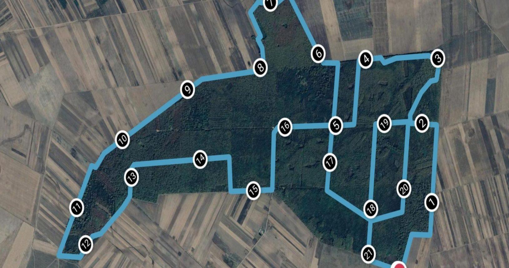 Traseul semimaraton Alerg în Dumbrava